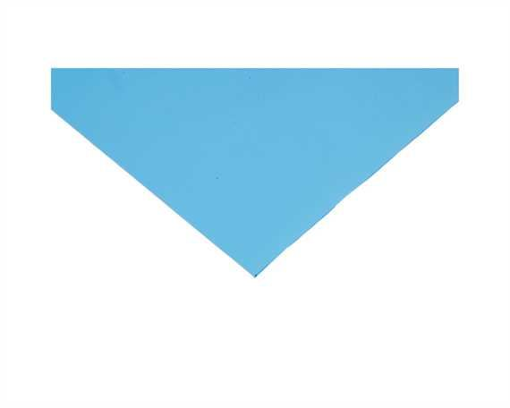 PORON 1.6 MM BLUE MED BUFF ONE SIDE (PER LINEAL MTR)