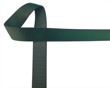 WEBBING POLYESTER HEAVY BOTTLE GREEN #102 25MM (PER L/MTR)